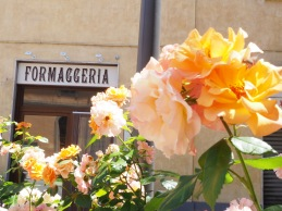 Orange roses/cheese shop! :)